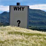Tagesfragen