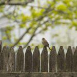 Nachbarn anerkennend wertschätzen